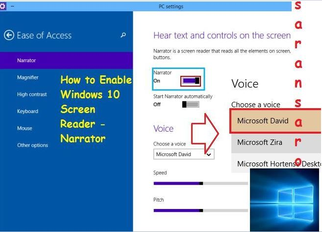 Enable Screen Reader for Windows 10