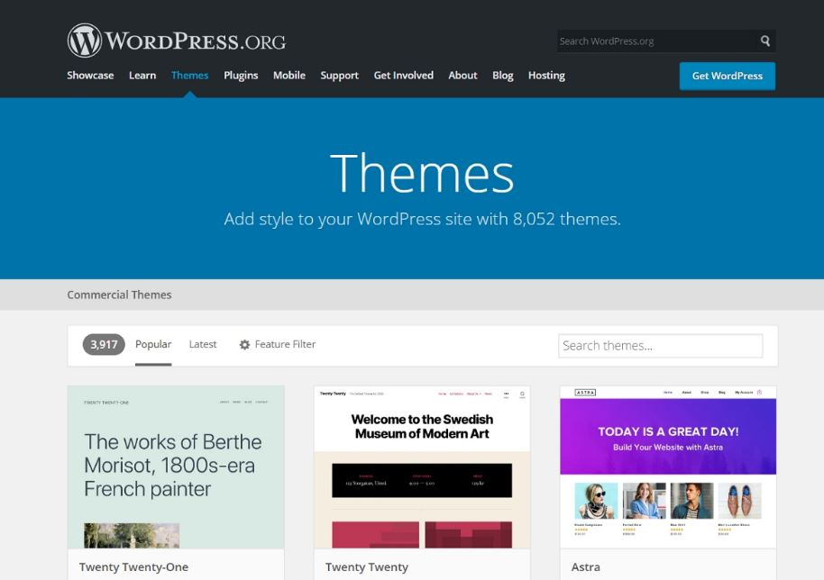 choose a theme for your website