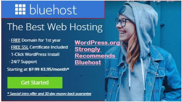 WordPress.org recommends Bluehost hosting